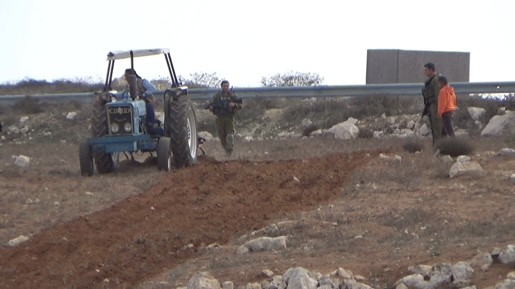 Palestinians plowing in front of Ma'on Israeli settlement's entrance, on December 3.
