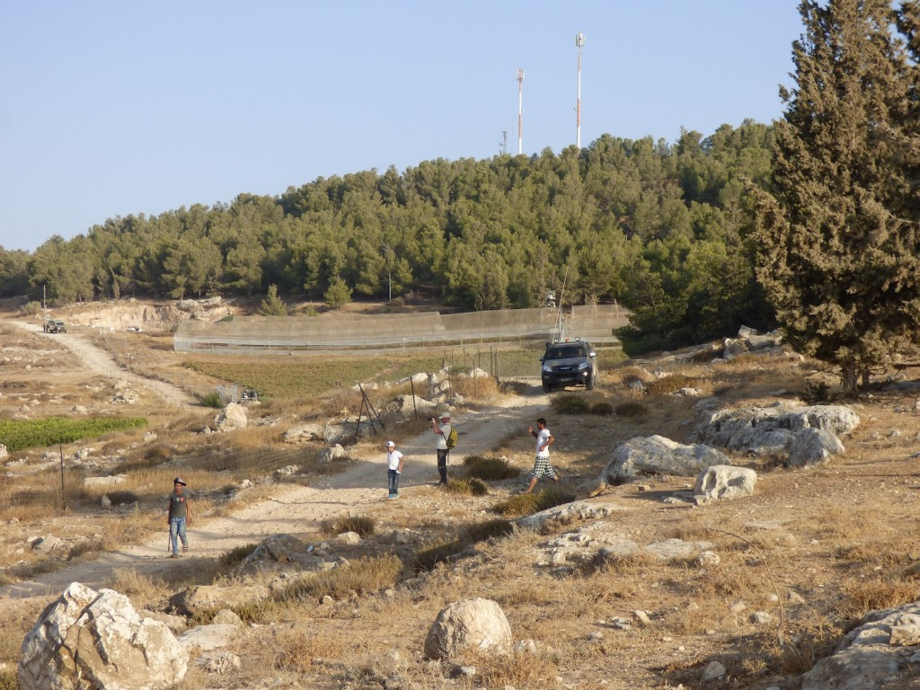 Palestinians and Internationals arrive in Khelly valley, At Tuwani village, after the settlers' attack.