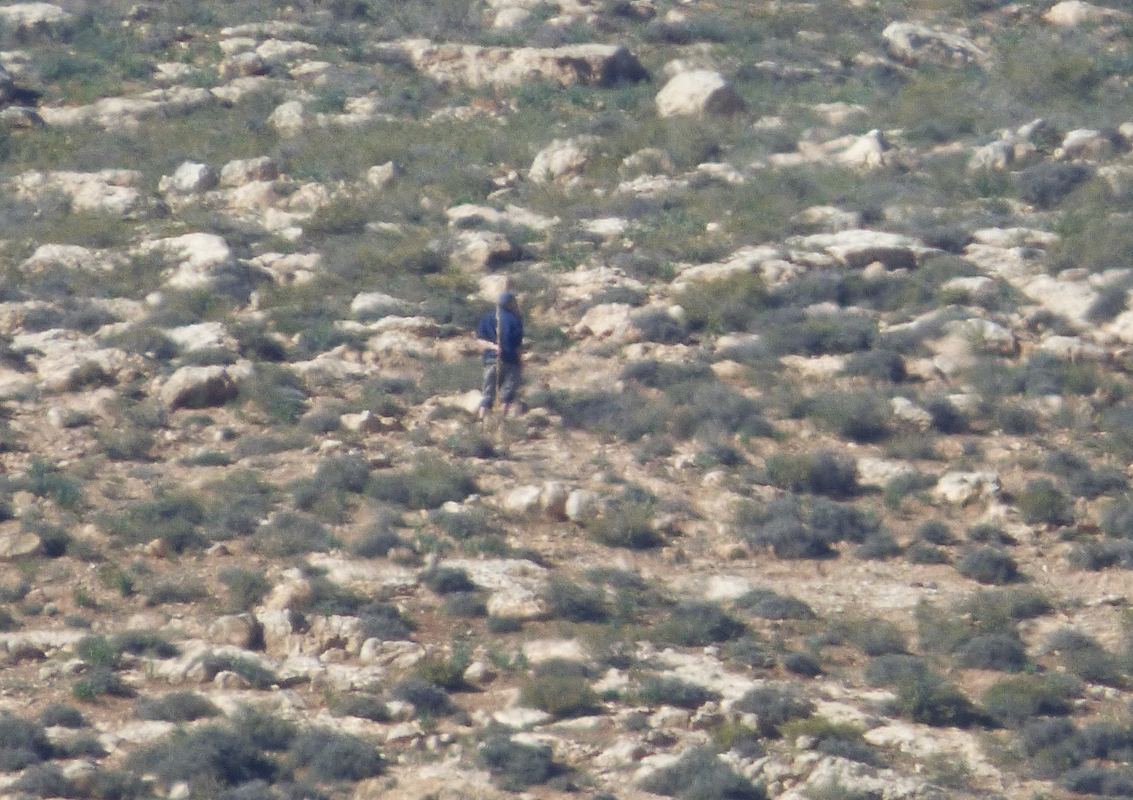 Settler from the illegal outpost of Mitzpe Yair