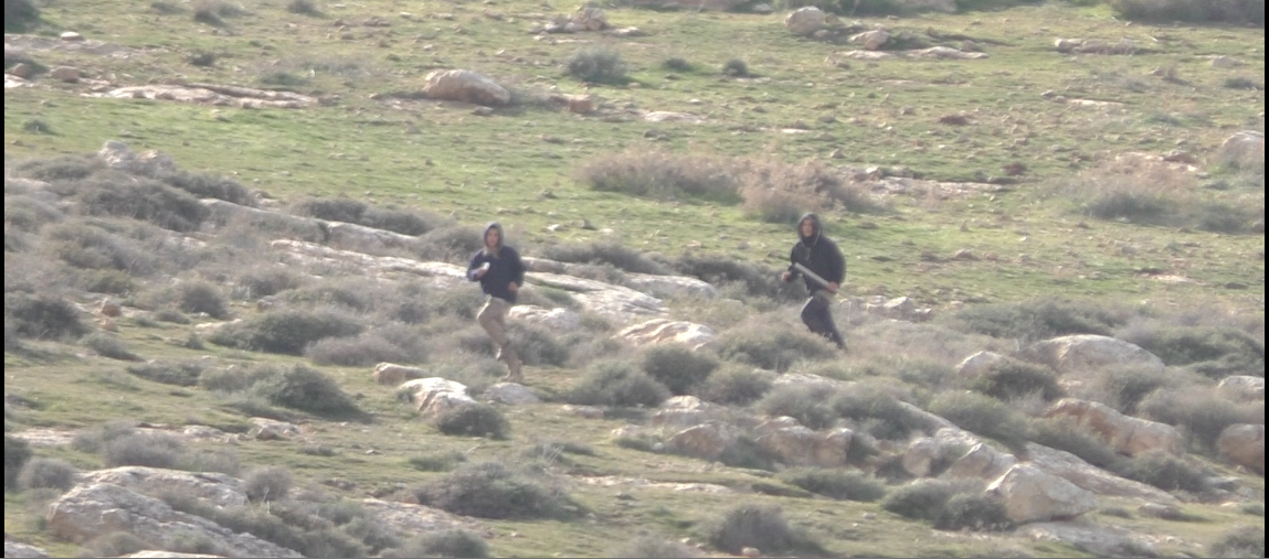 Settlers with sticks chasing children and Operation Dove volunteers.